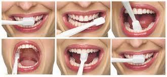 come-spazzolare-i-denti-dottoressa-daniea-aiello.jpg